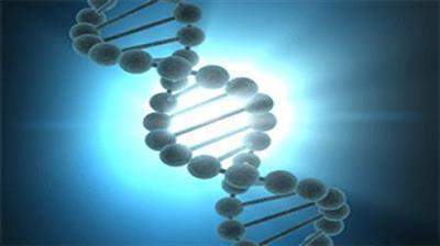 Coursera - Experimental Genome Science - University of Pennsylvania