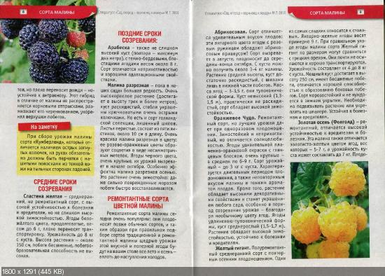 Сад, огород - кормилец и лекарь. Спецвыпуск №7 (апрель 2016)