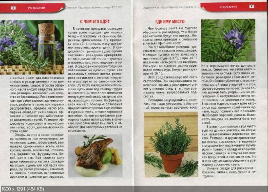 Сад, огород - кормилец и лекарь. Спецвыпуск №11 (май 2016)