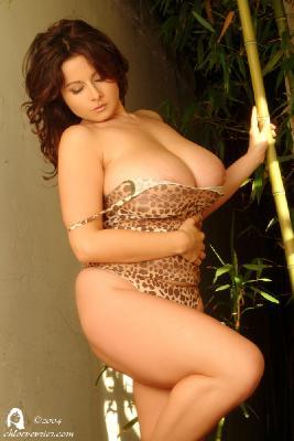 067 - Bamboo