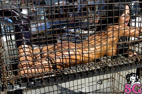 08-05 - Smitten - Caged