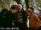 Камертон (1979) DVBRip