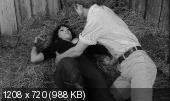 �������, �������! ����, ����! / Faster, Pussycat! Kill! Kill! (1965)